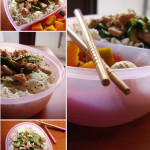 Noodles  Bento