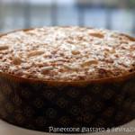 Panettone glassato (con Lievito Madre)