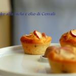 Cake alleggeriti alla mela e olio di cereali