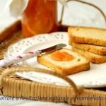Fette biscottate ( a lievitazione naturale) e Marmellata di Arance