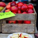 USA: Farmer Market, dal Vermont alle Cascate del Niagara.