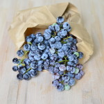 Schiaccia all'uva fragola, vaniglia e sciroppo d'acero
