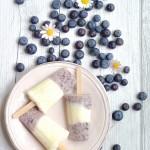 Gelato allo yogurt, mirtilli e miele