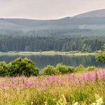 Il nostro viaggio in Scozia